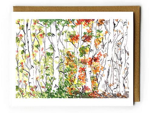 Birch Forest, Four Seasons - Blank Card