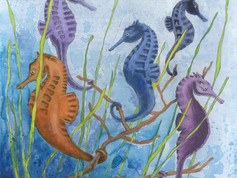 Seahorses in Paradise