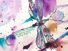 Dragonflies are Iridescent