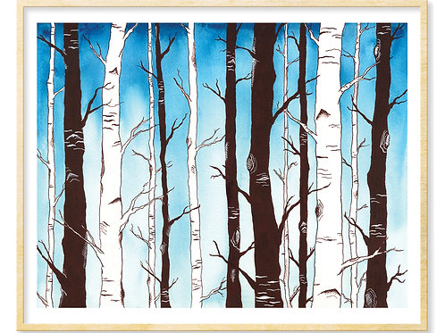 Sapphire Sky with Birch Forest - Print