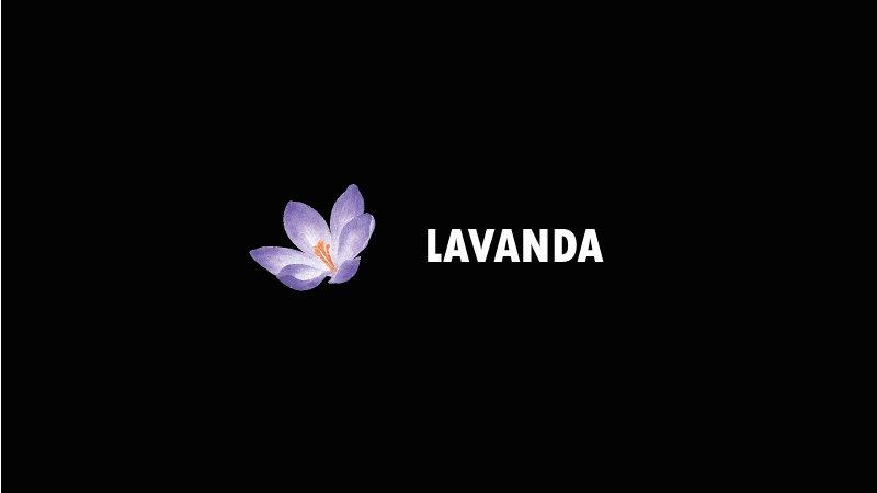 """""""Black Jam"""" Lavanda"""