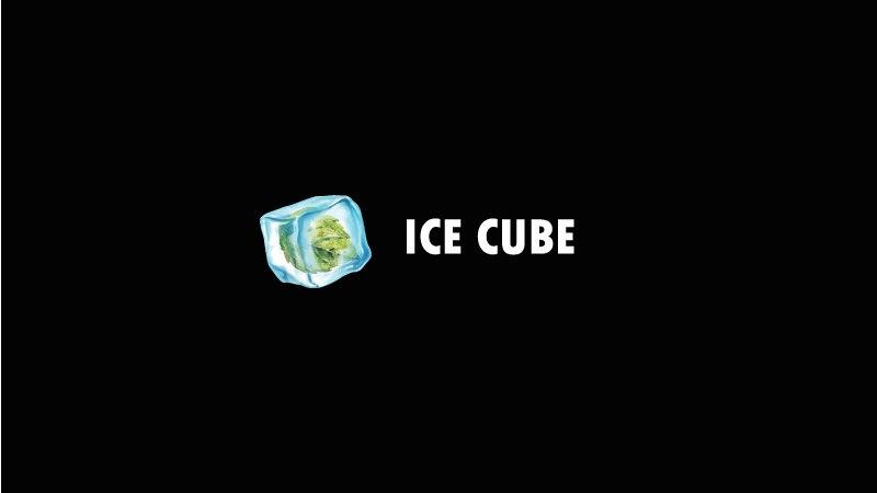 """Black Jam"" Ice cube"