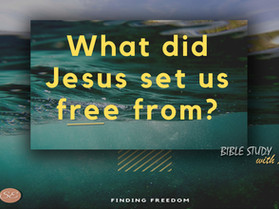 Finding Freedom Series Part 1 - Study Notes