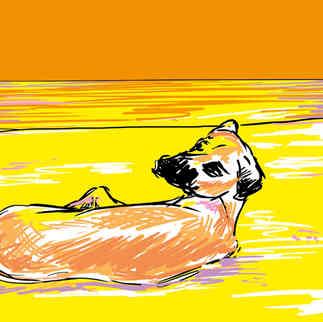 Série Arte & História -  Tobi na Praia Grande - Yuri Vasconcellos