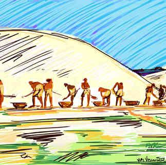 Série Arte & História - Trabalhadores do Sal - Yuri Vasconcellos