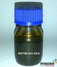 WB-REX.jpg