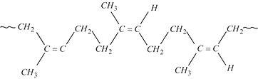 NR-Structure.jpg
