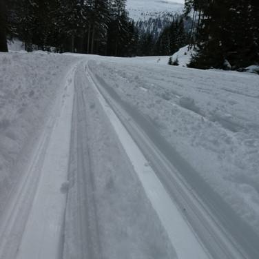 2019-03-14 Schneeschuh Angertal