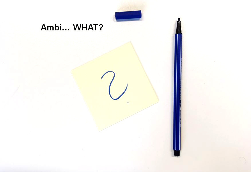 Ambidextrie Ambidexterity Julia Duwe