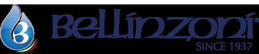 logoBellinzoniNews.png