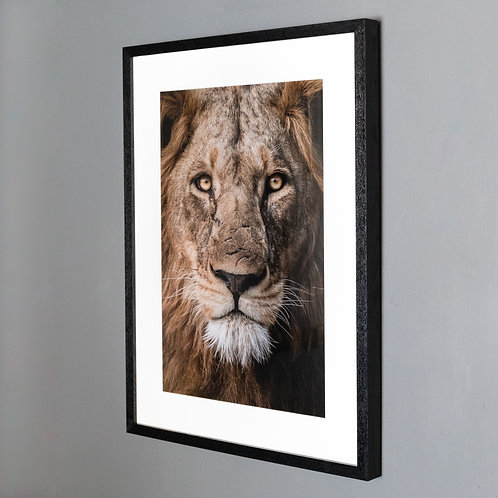 Framed print- Scar Face