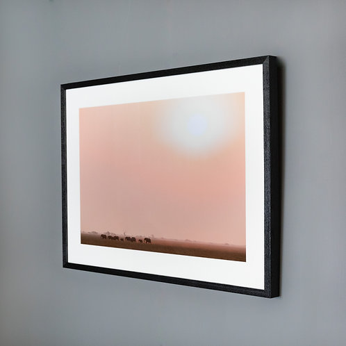 Framed print- Everything the light touches