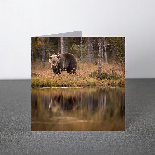 Card- Reflection