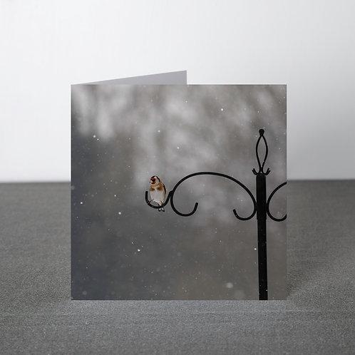 Card- Goldfinch in snowfall