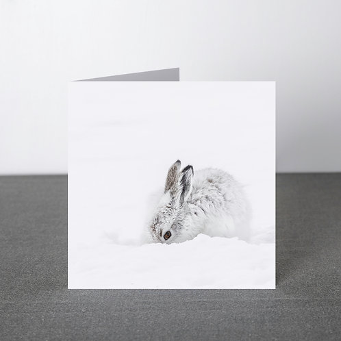 Card-Got my eye on you