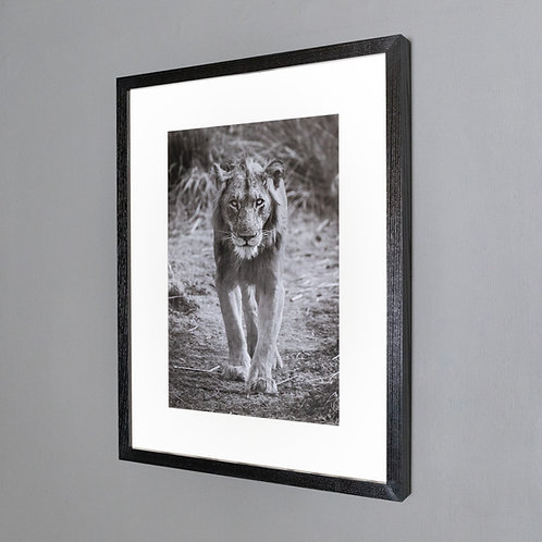 Framed print- The New King