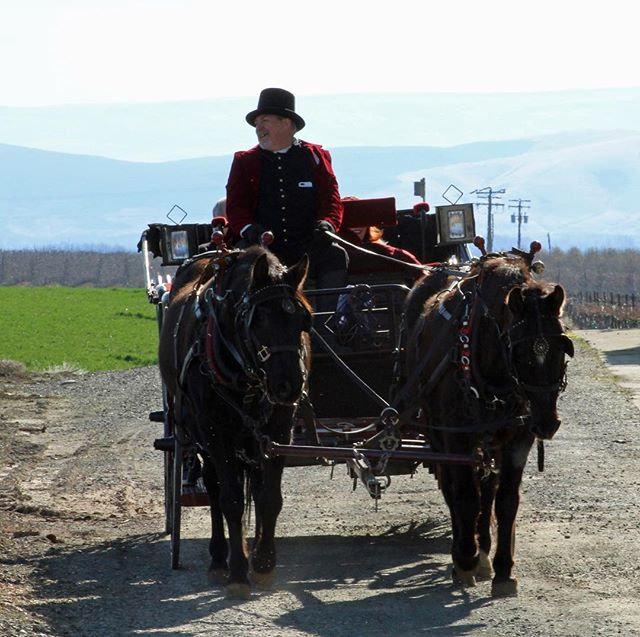 Wine Ride Offering 1