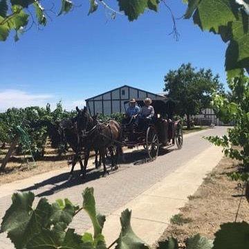 Wine Ride Offering 3