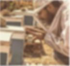 Στιγμιότυπο 2019-05-12, 1.59.53 μμ.png