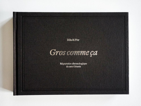 """Ella & Pitr : Nouveau livre """"Gros comme ça"""""""