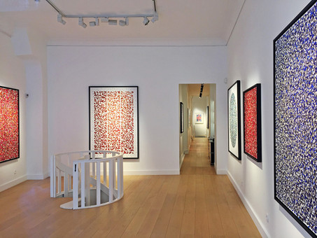 "Sowat: ""Fluid Mechanics"", new installation views"