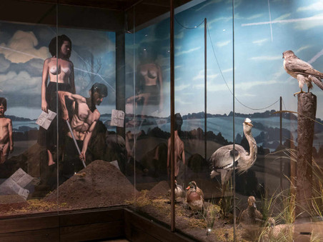 François Malingrëy and the Hunting and Nature Museum, Paris