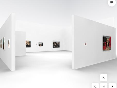 """François Malingrëy : """"Les silencieux"""", visite virtuelle de l'exposition"""