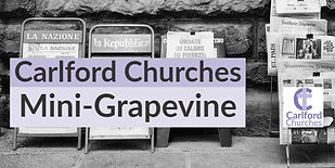 mini-grapevine.jpg