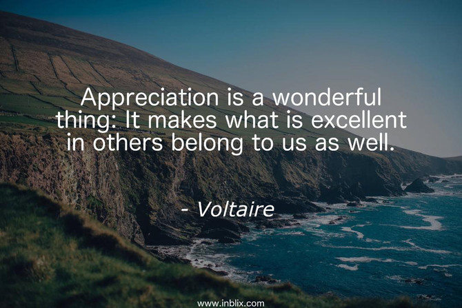 WHAT YOU APPRECIATE APPRECIATES