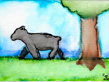 Watercolor Cards: Bear