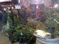 Marché de Noël à Sancerre