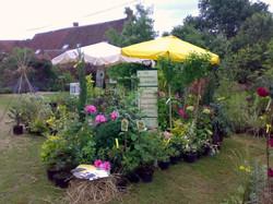 Jardin de Marie juin 2008