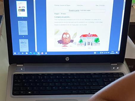 Fenix online courses