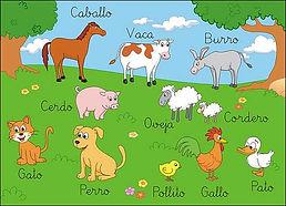 los animales.jpg