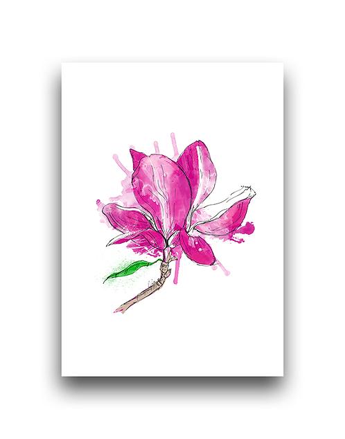 Magnolia Splash