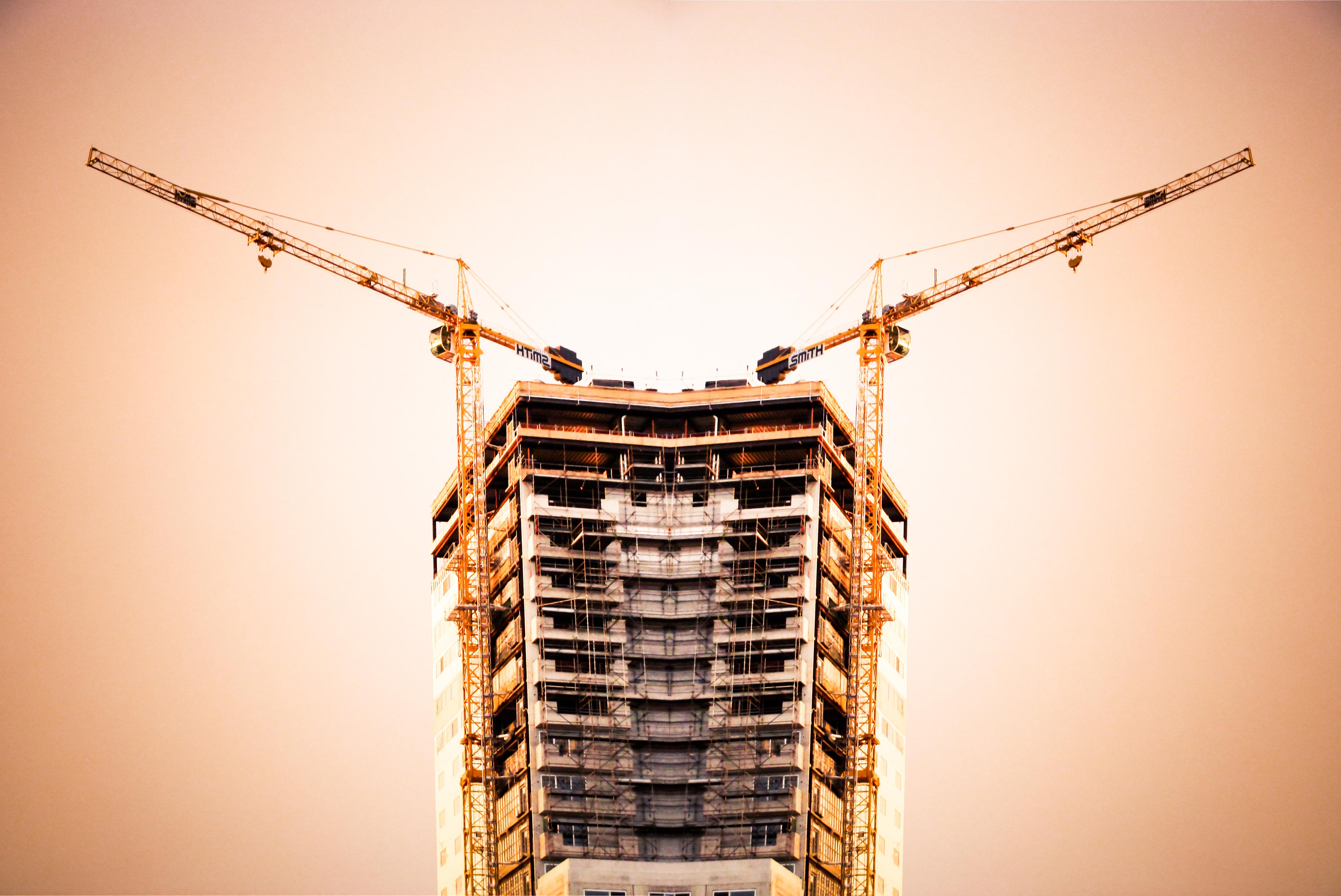 crane+reversed-16+small