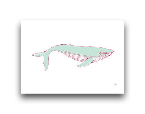 Whale oh Whale