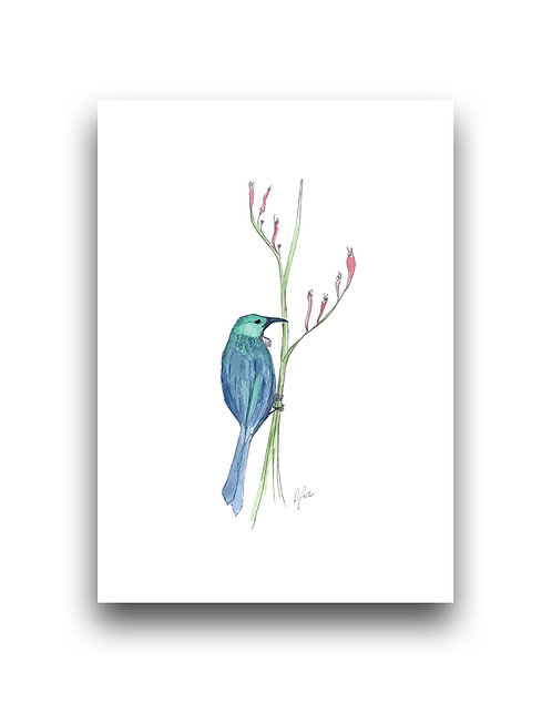 Painterly Tui  - Illustration