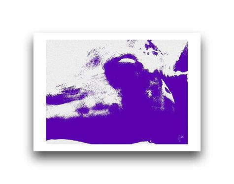 Africa Shadows - Purple