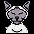 002-cat.png