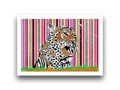 The Tiger & his Technicolor Dreamcoat