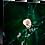 Thumbnail: Blossom V