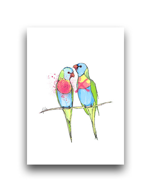 Rainbow Lorikeets - Illustration **Apples & Oranges**