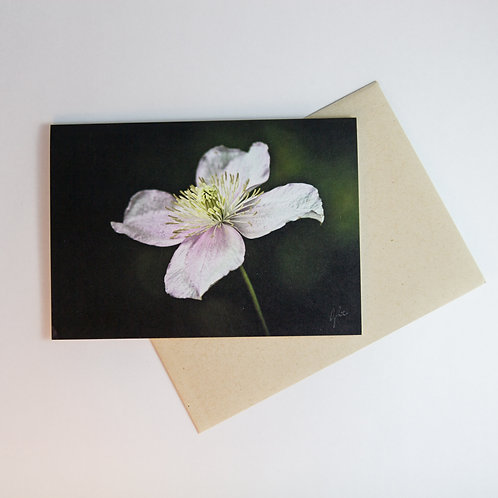Clematis Floral Greeting Card