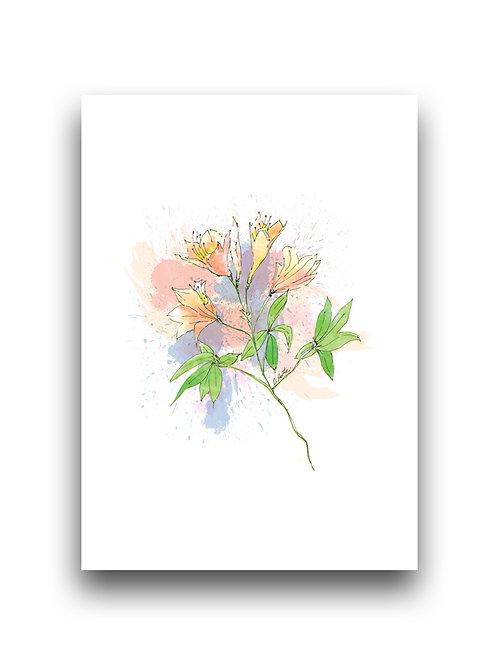 Flowers - Azaleas - Illustration