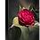 Thumbnail: Ruby Red - Camellia
