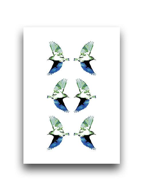 Waxeyes Config B - Blue - Illustration