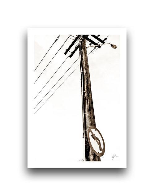 Rustic Power Pole II