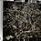Thumbnail: Turner's Kohuhu