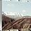 Thumbnail: Otago Journey